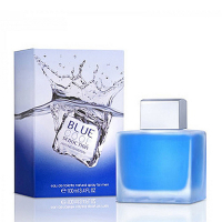 Antonio Banderas Blue Cool Seduction edt 100ml мужские