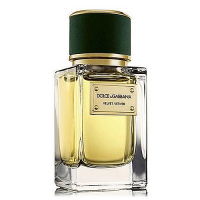 Dolce & Gabbana Velvet Vetiver edp 100ml